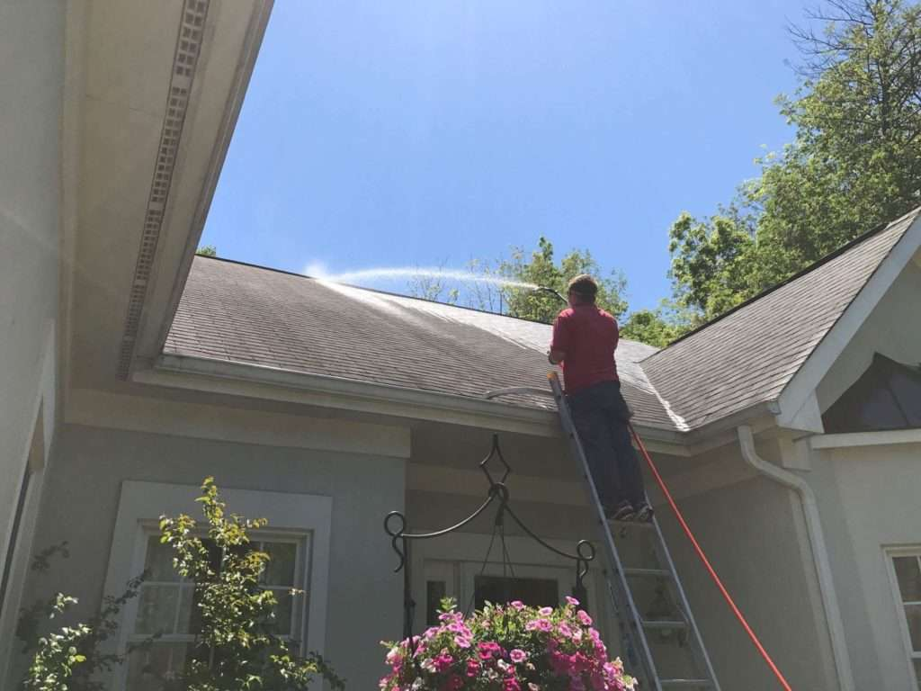 Professional Roof Soft Washing