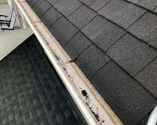Gutter cleaning service results