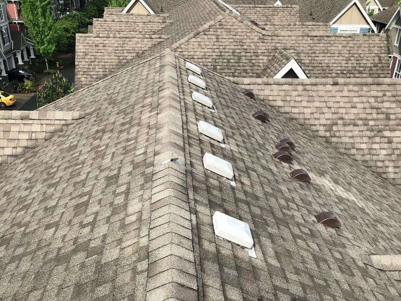 Roof before professional roof washing