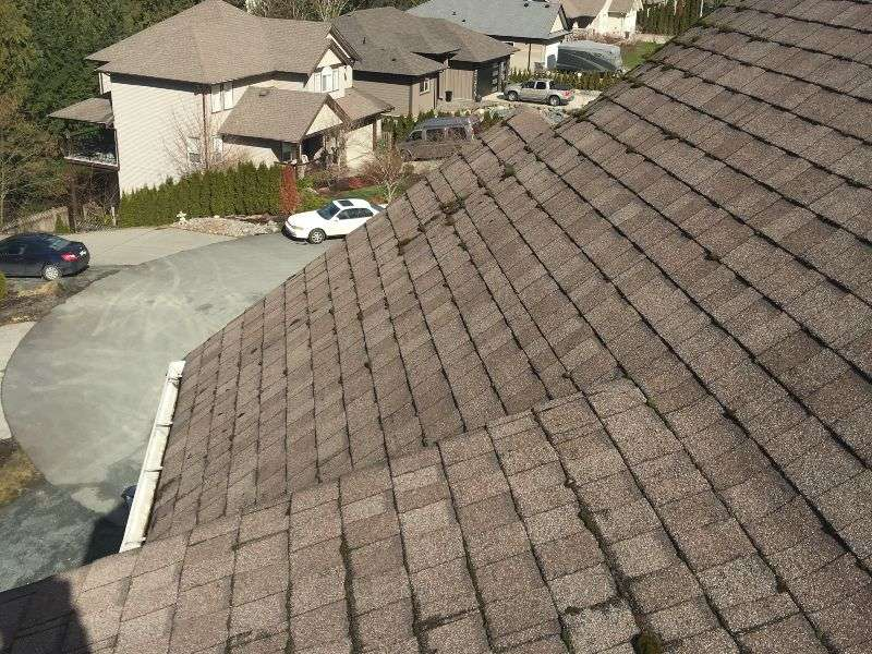 Unclean roof