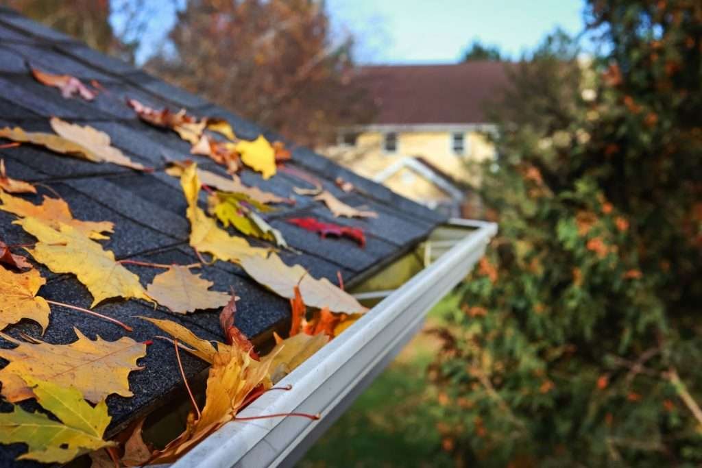 Clogged gutter full of leaves